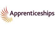apprenticeships logo NowSkills IT apprenticeship accreditation partner