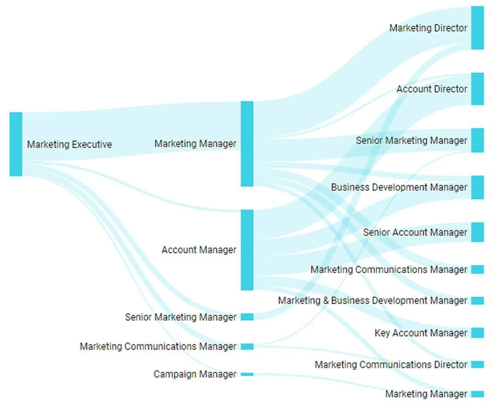 Digital Marketing Career Roadmap