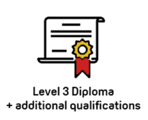 solutions-technician-diploma